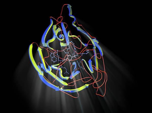 Neuraminidase Art Print