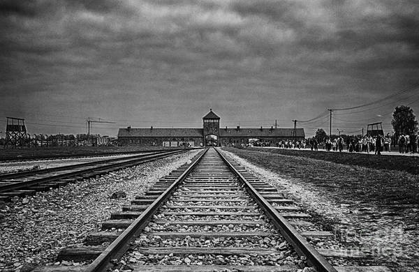 Holocaust Photograph - Never Forget by Giovanni Chianese