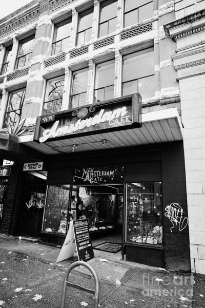Wall Art - Photograph - new amsterdam cafe safe space for cannabis smoking Vancouver BC Canada by Joe Fox