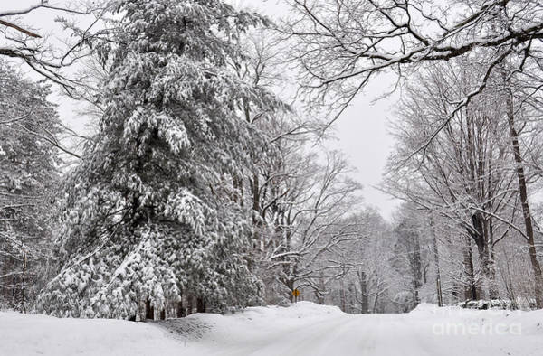 Photograph - New England Snow Scene by Staci Bigelow