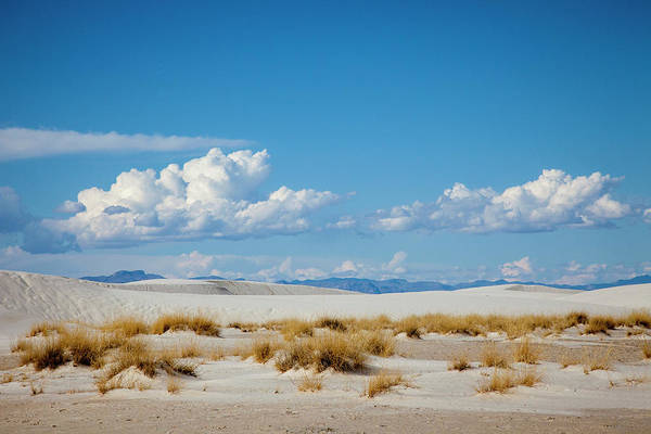 Land Of Enchantment Photograph - New Mexico White Sands National by Hollice Looney