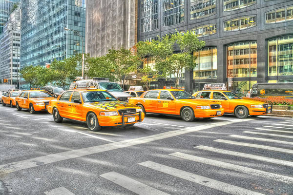 Photograph - New York Cabs by Susan Leonard