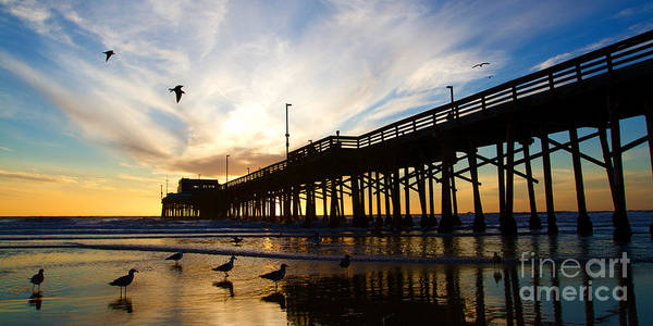 Wall Art - Photograph - Newport Beach California Pier At Sunset In The Golden Silhouette by ELITE IMAGE photography By Chad McDermott