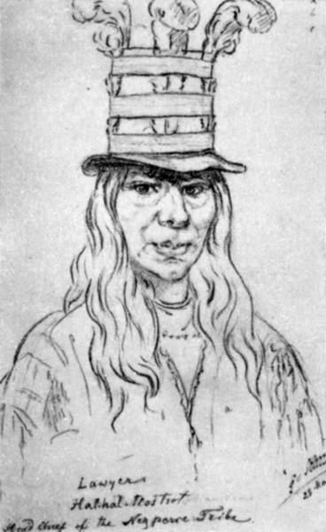 1854 Drawing - Nez Perce Chief, C1854 by Granger