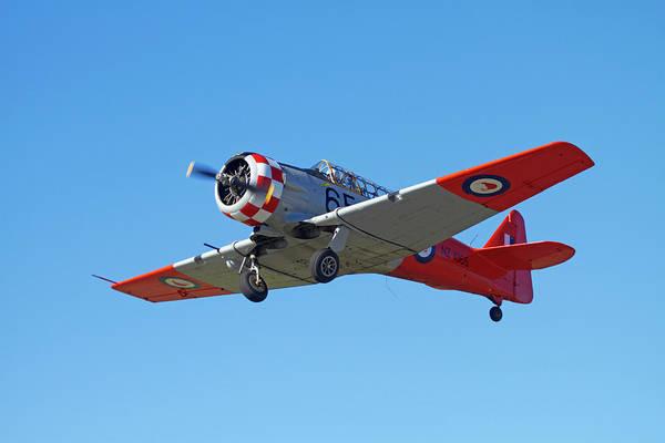 Vintage Airplane Photograph - North American Harvard, Or T-6 Texan by David Wall
