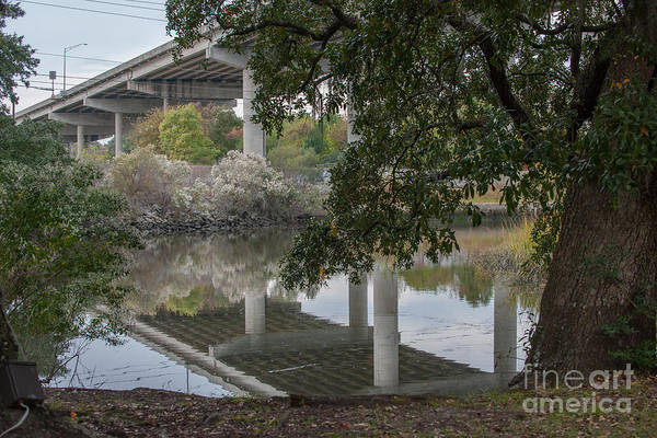 Photograph - North Charleston Park by Dale Powell