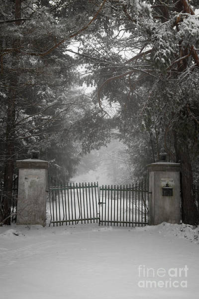 Photograph - Old Driveway Gate In Winter by Elena Elisseeva