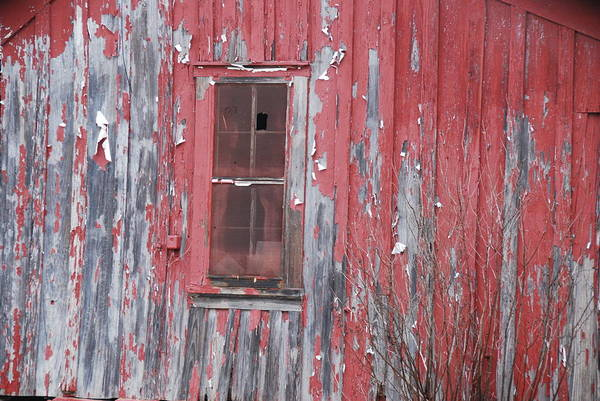 Wall Art - Photograph - Old Red House by Thea Wolff
