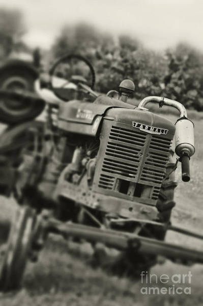 Farmall Photograph - Old Tractor by HD Connelly