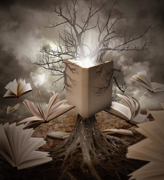 Imaginative Wall Art - Photograph - Old Tree Reading Story Book by Angela Waye