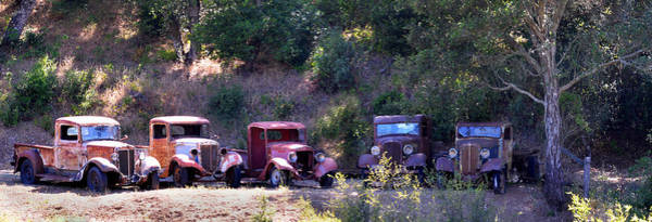 Photograph - Oldtimers Rendezvous by Lynn Bauer