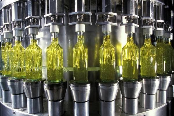 Olive Oil Photograph - Olive Oil Production by Patrick Landmann/science Photo Library