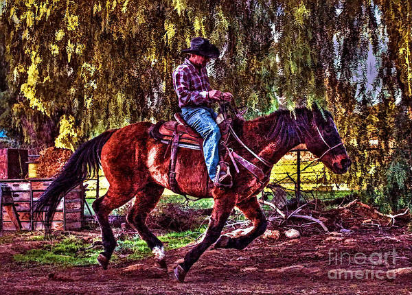 Norco Photograph - On The Ranch by Tommy Anderson