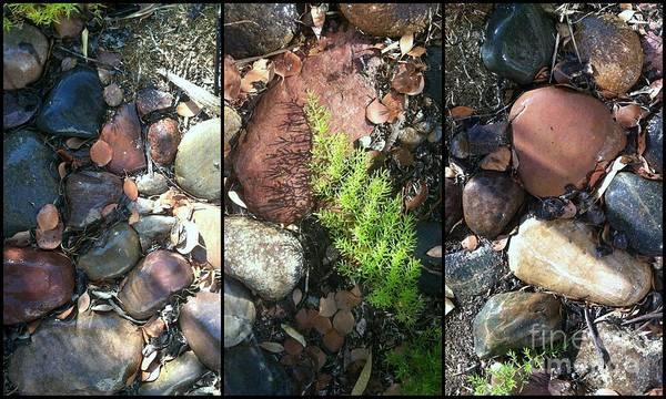 Photograph - On The Rocks by Marlene Burns