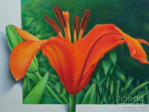 Painting - Orange Lily by Pamela Clements