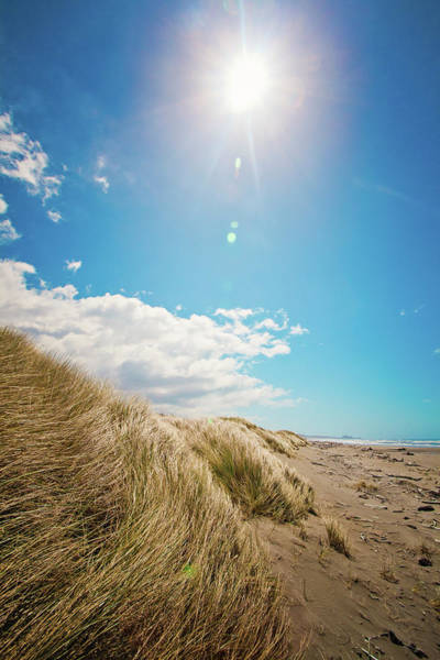 Oregon Dunes Photograph - Oregon Sand Dunes by Christopher Kimmel