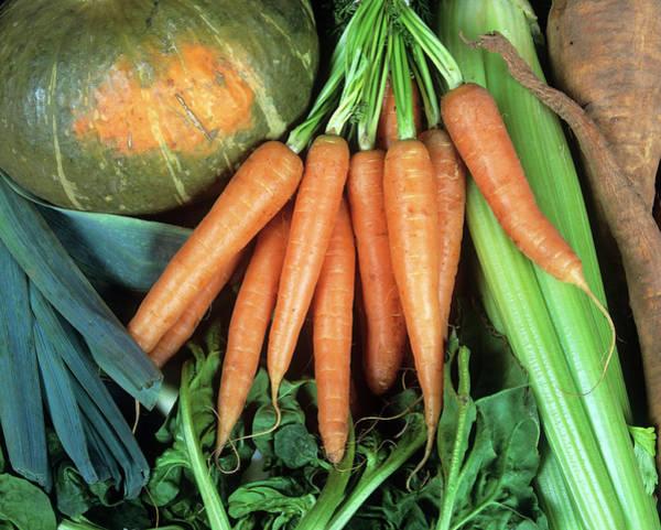 Cucurbita Wall Art - Photograph - Organic Vegetables by Martin Bond/science Photo Library