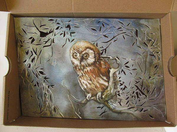 Cut-out Mixed Media - Owl In A Shoe Box by Alfred Ng