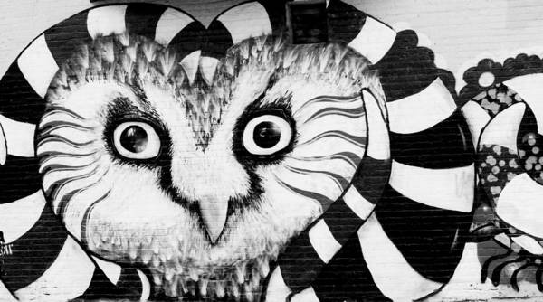 Photograph - Owl Mural by Ricky L Jones