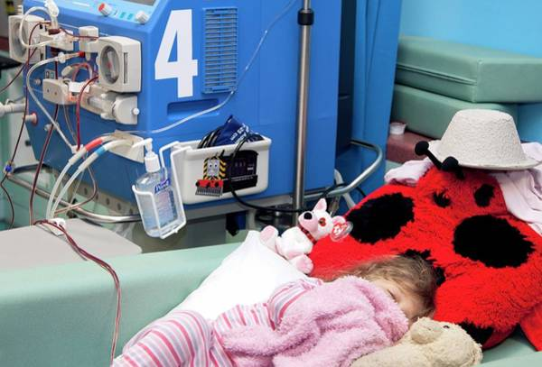 Wall Art - Photograph - Paediatric Dialysis by Life In View/science Photo Library