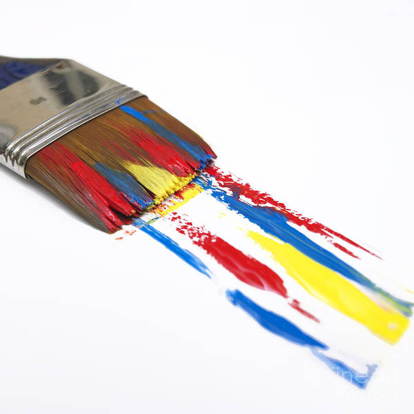 Improvement Photograph - Paintbrush by Bernard Jaubert