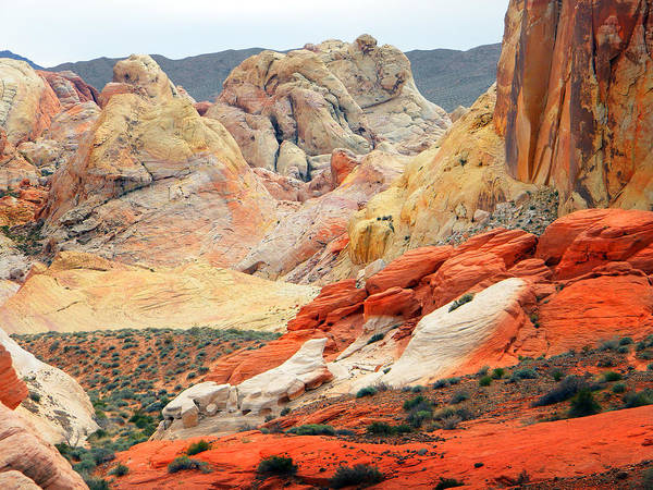 Photograph - Painted Desert by Frank Wilson