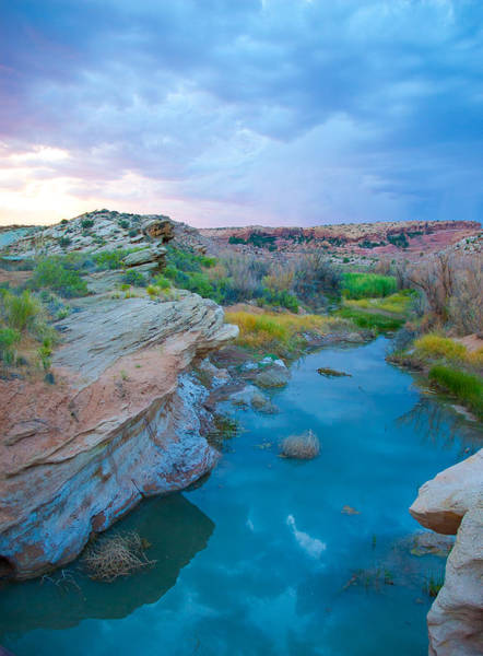 Wall Art - Photograph - Painted River Gorge by Sarah Crites