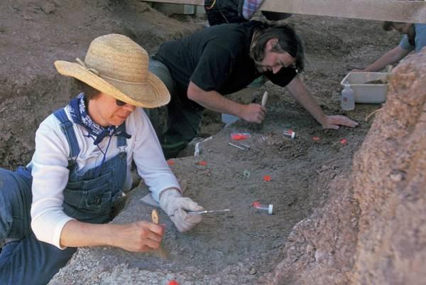 North Dakota Badlands Wall Art - Photograph - Palaeontology Dig by Jim West