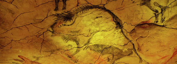 Wall Art - Photograph - Paleolithic Paintings, Altamira Cave by Animal Images