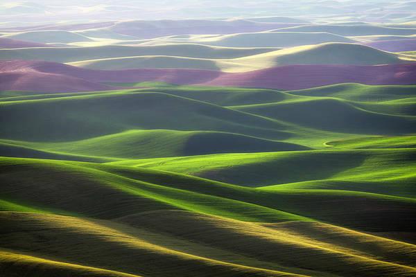 Photograph - Palouse Rolling Hills by Justinreznick