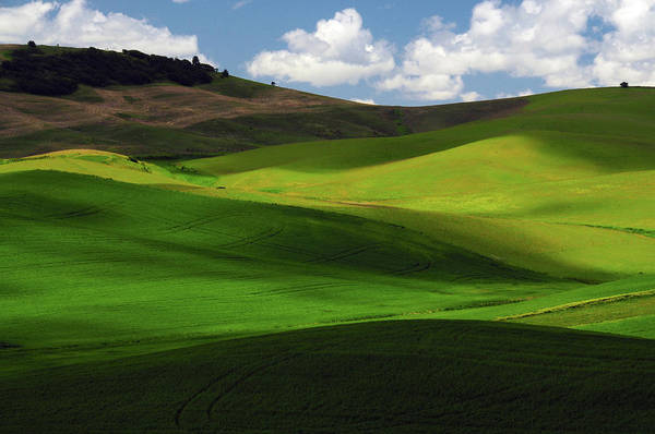 Brown County Photograph - Palouse View In Whitman County by Michel Hersen