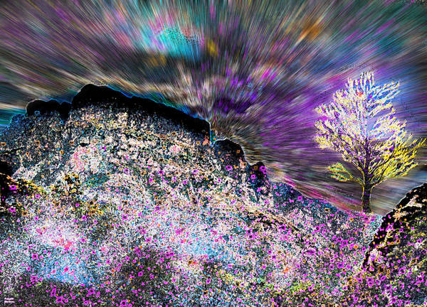 Digital Art - Paradise by Augusta Stylianou