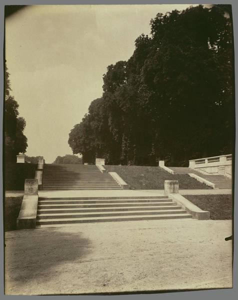 Wall Art - Drawing - Parc De Saint-cloud Eugène Atget, French by Litz Collection