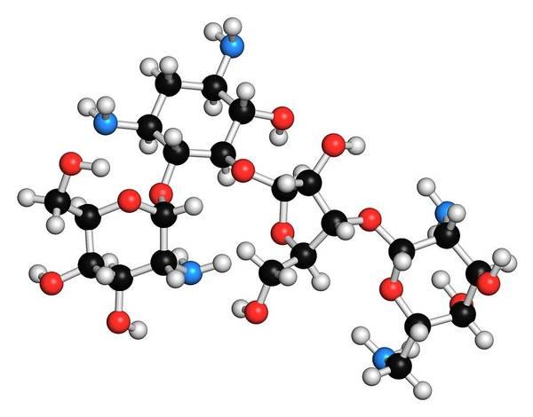 Amoebiasis Wall Art - Photograph - Paromomycin Aminoglycoside Antibiotic by Molekuul