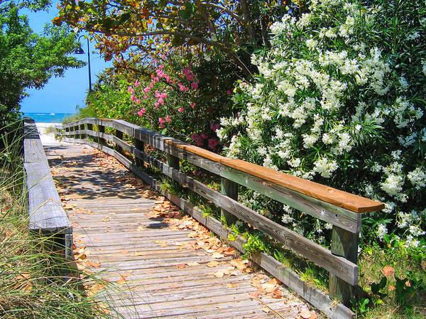 Pathway To Beach Art Print