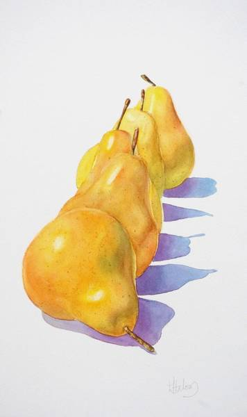 Painting - Pears II by Greg and Linda Halom
