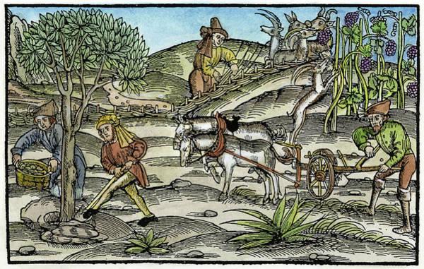 Wall Art - Painting - Peasants Farming, C1520 by Granger