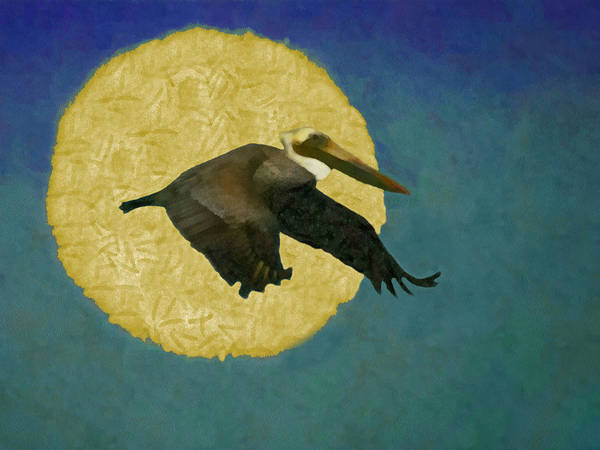 Shore Bird Digital Art - Pelican Fly By by Ernie Echols