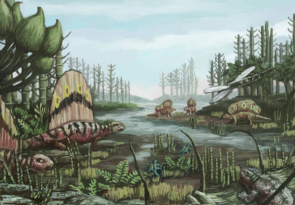 Photograph - Permian Period, Illustration by Spencer Sutton
