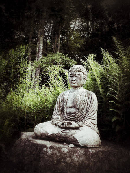 Photograph - Phoenician Buddha by Natasha Marco