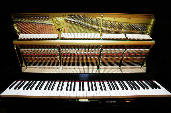 Keyboard Instrument Wall Art - Photograph - Piano by Peter Falkner/science Photo Library