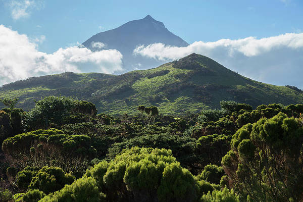 Acores Photograph - Pico Mountain  Pico Island, Azores by Carl Bruemmer