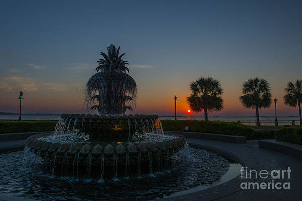 Photograph - Early Light Over Pineapple by Dale Powell