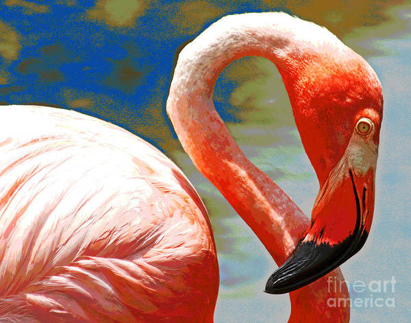 Photograph - Pink Flamingo by Larry Oskin