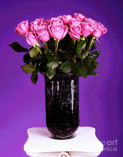 Photograph - Pink Rose Bouquet In Black Vase by Larry Oskin