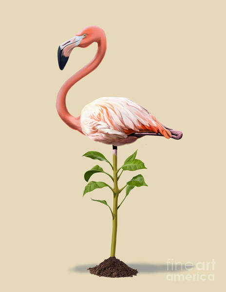 Flamingos Wall Art - Drawing - Planted Colour by Rob Snow