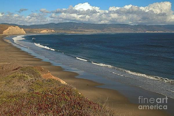 Photograph - Point Reyes Drakes Beach by Adam Jewell
