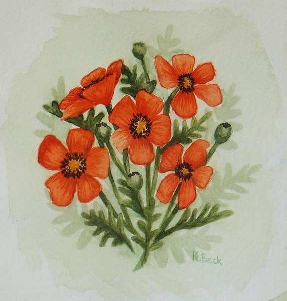 Wall Art - Painting - Poppies by Katherine Young-Beck