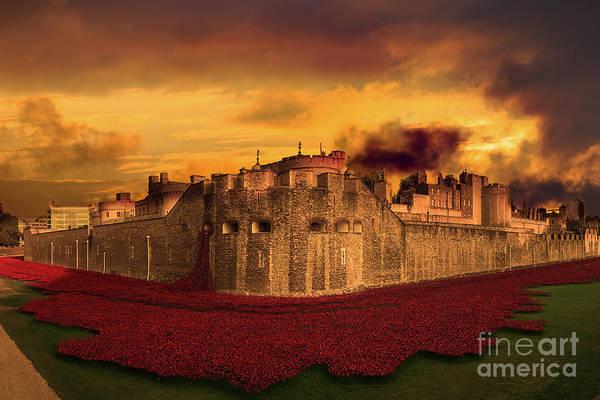 Poppies Tower Of London  Art Print