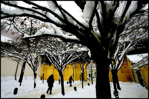 Photograph - Prague Winter  by Paul Sutcliffe